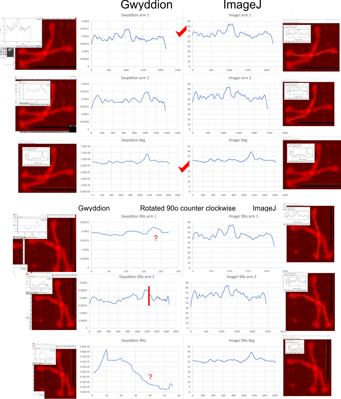 comparing LUT plots in ImageJ and Gwyddion